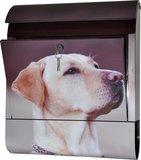 Die Briefkastenfirma Labrador brievenbus_