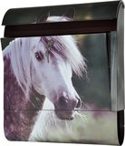 Die Briefkastenfirma Paard brievenbus