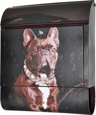 Die Briefkastenfirma Bulldog brievenbus