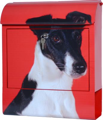Die Briefkastenfirma Foxterrier brievenbus